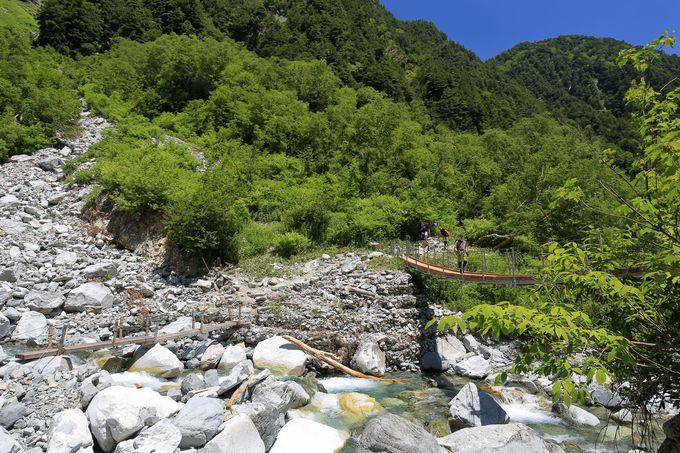横尾から本谷橋までは割と緩めな山道で