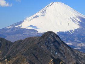 誰でも絶景を楽しめる!神奈川・金時山ハイキング主要ルート解説