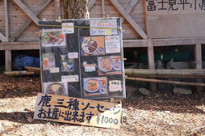 健脚はそのまま金峰山へ、自信がないなら富士見平小屋で一泊も