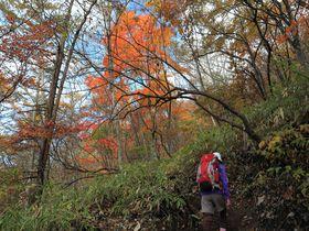 群馬の富士山を2時間で!彩り深い錦秋の榛名富士ハイキング