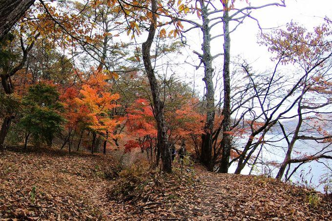 きっと忘れられない。榛名湖畔の紅葉を動画で紹介!
