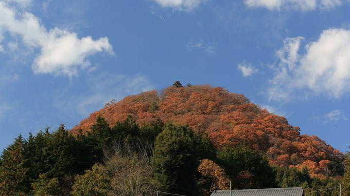 ポッコリ盛り上がった形状が絶景をもたらす要害山