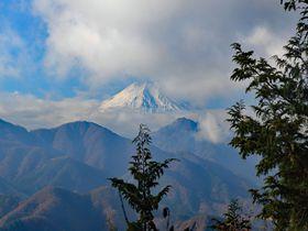 秀麗富岳12景を目指せ!山梨・高倉山〜倉岳山を制覇する