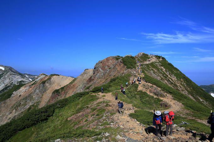 美しい北アルプスを眺めながら小蓮華山まで