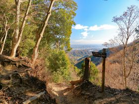 森林セラピーの神奈川「鐘ヶ獄」でリフレッシュハイキング