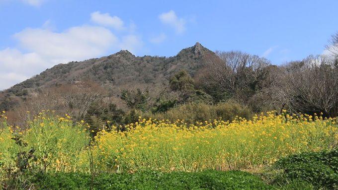 南総里見八犬伝の舞台、「富山」まで足を延ばす縦走も!