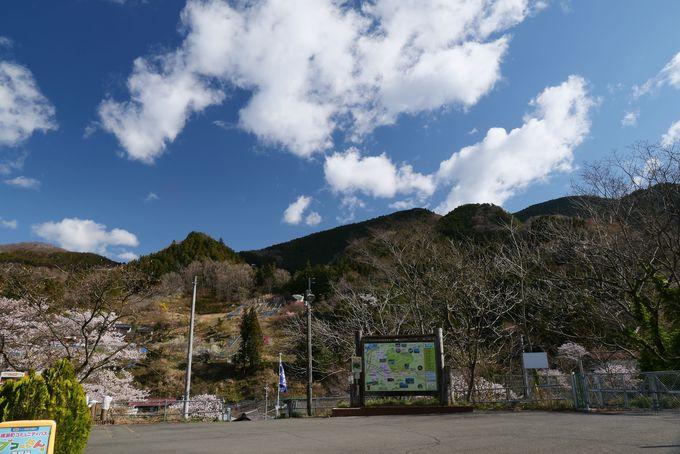 日向山ハイキングは西武鉄道秩父線芦ヶ久保駅から