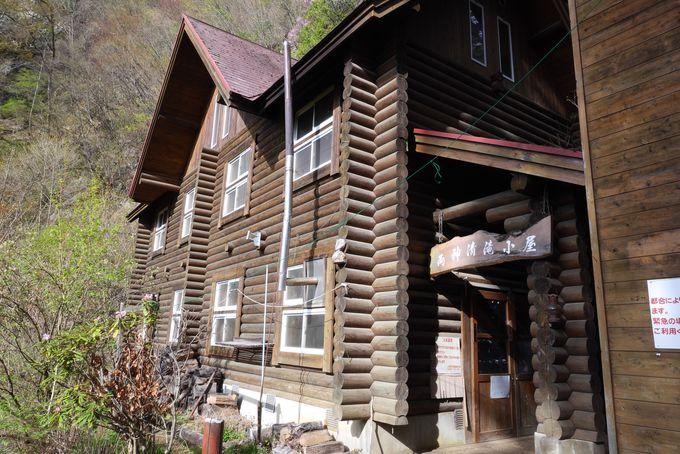 草花を眺めて清滝小屋へ