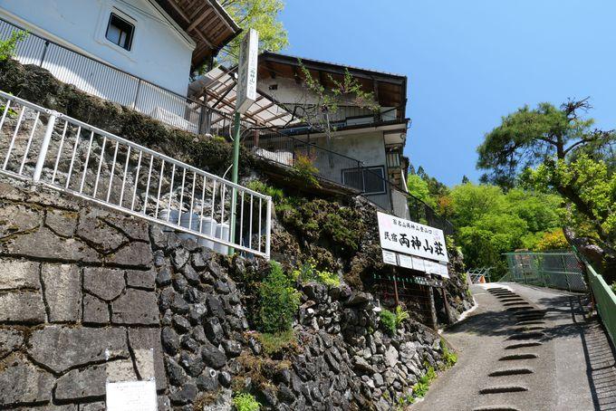 標高1,723mの両神山は植生がすばらしい花の山