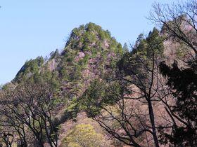 大展望!花の咲く日本百名山・山岳信仰の埼玉「両神山」