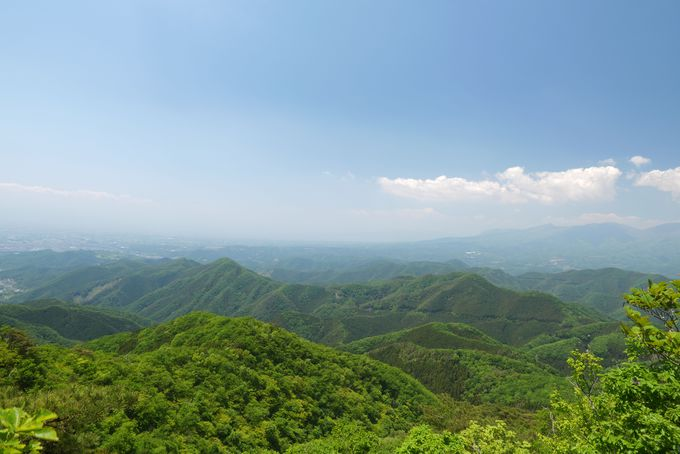 山頂から展望台へ!ハイキングの様子を動画で紹介