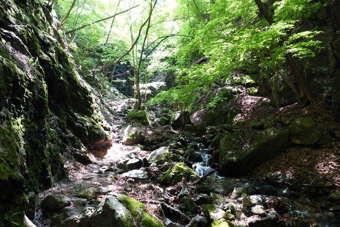 渓谷の間を登っていくダイナミックさ