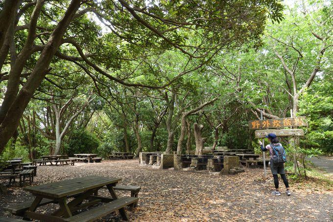 大自然広がる大房岬自然公園は誰もが利用できるリゾート