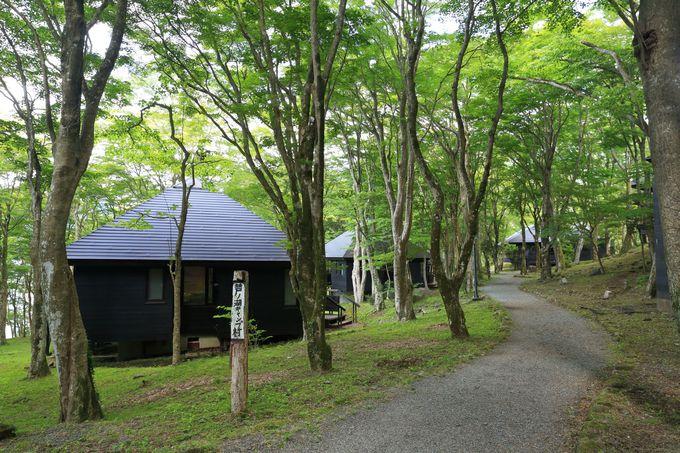 芦ノ湖キャンプ村を経由して湖尻水門まで