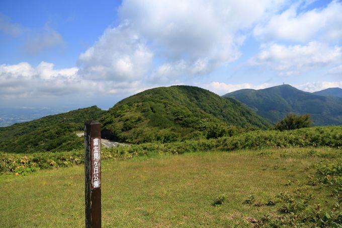 長尾峠までは笹林と樹林帯。尾根筋は素晴らしい景色が広がる