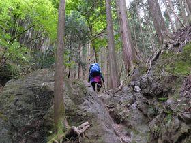 3時間半で完結する岩山トレッキング!埼玉名峰「伊豆ヶ岳」