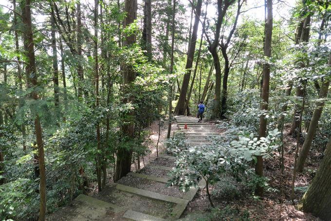 西宮から「猿投・菊石七滝遊歩道」を巡るロングコースも