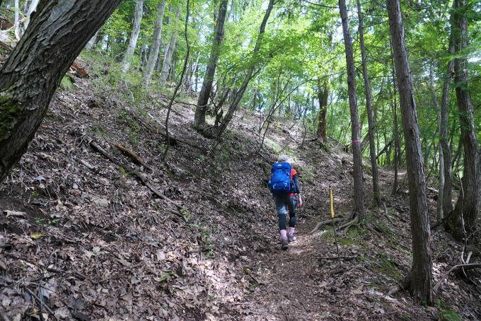 樹林帯の整備された「太刀の抜き岩」までの上り