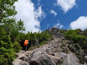 白駒池から神秘の森を抜け2352mの絶景へ!長野「ニュウ」