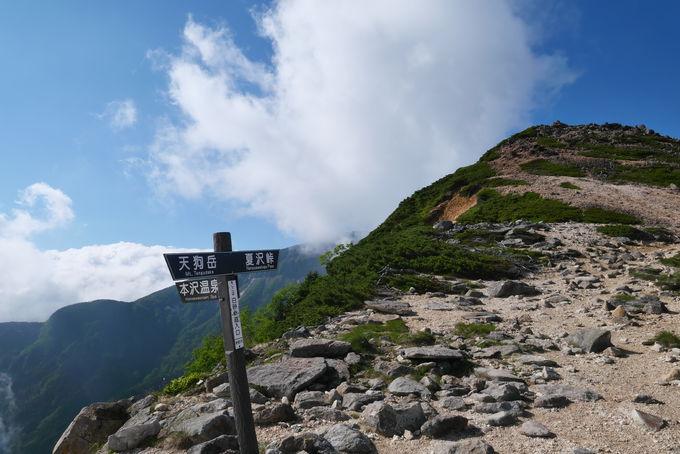 森林限界を越え、そびえたつ天空の天狗岳へ