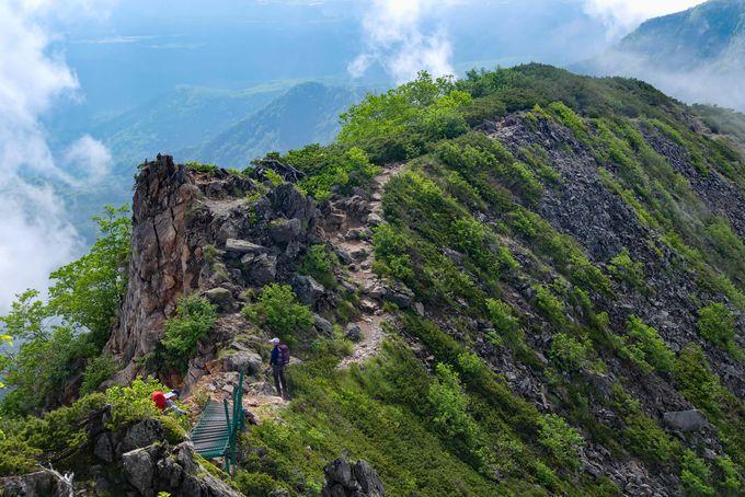 東天狗岳と西天狗岳の秀峰を堪能する尾根ルート