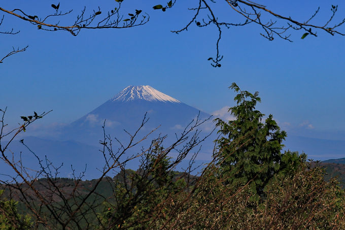 大平山山頂では富士山、相模湾、伊豆の山々が一望!