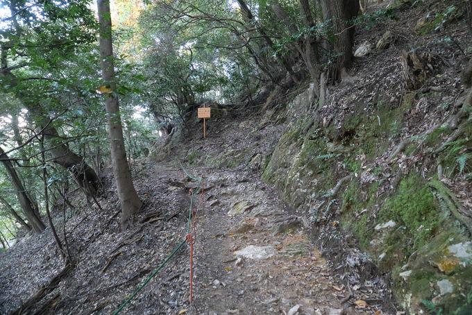 岐阜公園をスタート!金華山への登山ルート