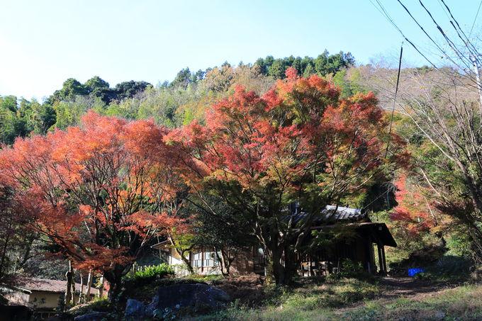 伝統的な建築が連なる花沢の里を抜けて登山口へ!