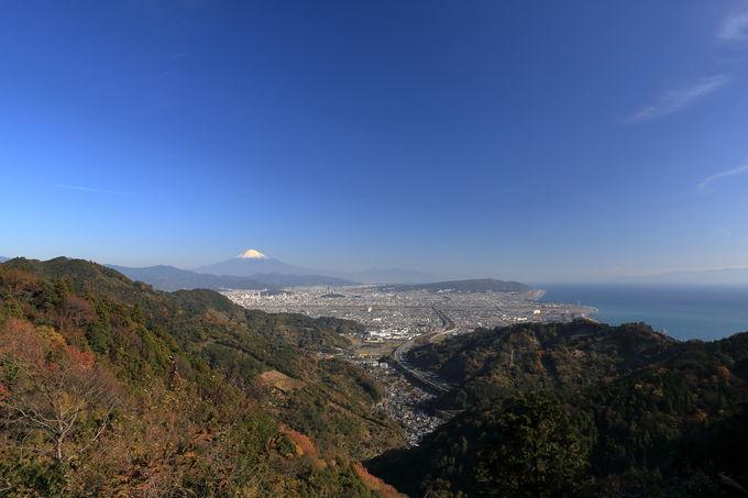 登山道の分岐を日本坂峠方面か鞍掛峠方面へ