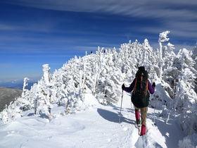 樹氷と雄大な景色を手軽に楽しむ!冬の長野・北横岳トレッキング