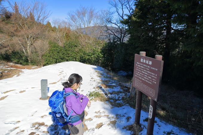 最高地点の鷹巣山をめざし、最後の上りを楽しむ