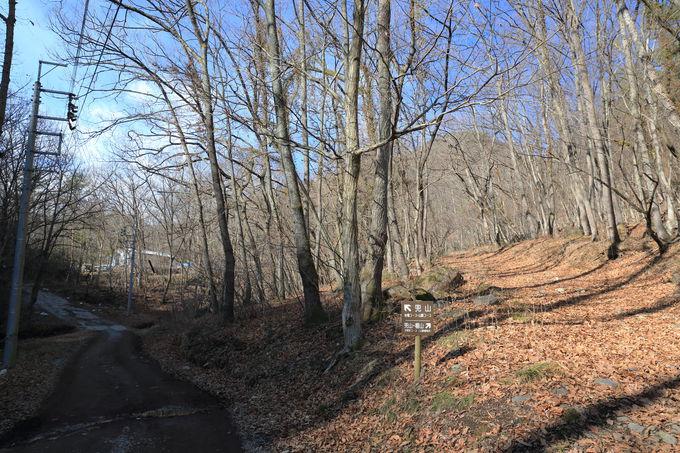 兜山へは分岐を左、さらに岩場コースは分岐を右に
