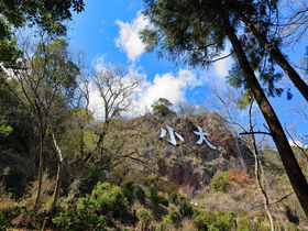 侮るなかれ!絶景の栃木・大小山の駅からお手軽ハイキング