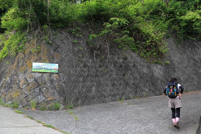 東名高速の下をくぐって登山口へ!