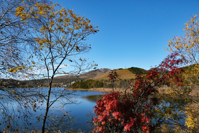 手軽に信州を体感する蓼科山登山&白樺湖畔大満足紅葉散策