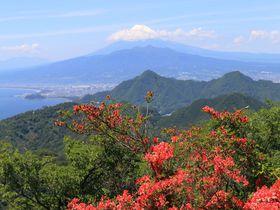 伊豆ならでは!海越しの富士山と自然を愛でる静岡3山トレッキング