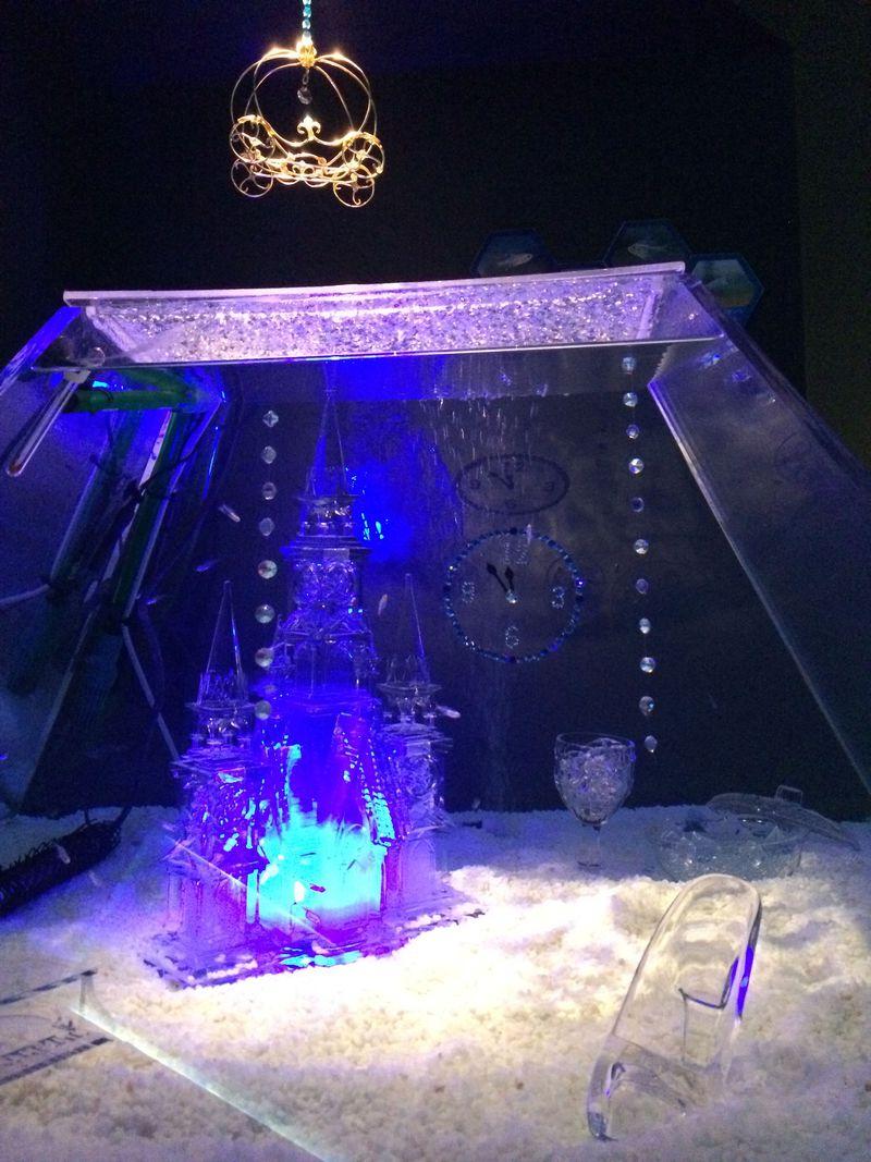 福岡・マリンワールド冬の三大イベントが凄い!「スケリウム」やこたつでイルカショーを満喫しよう