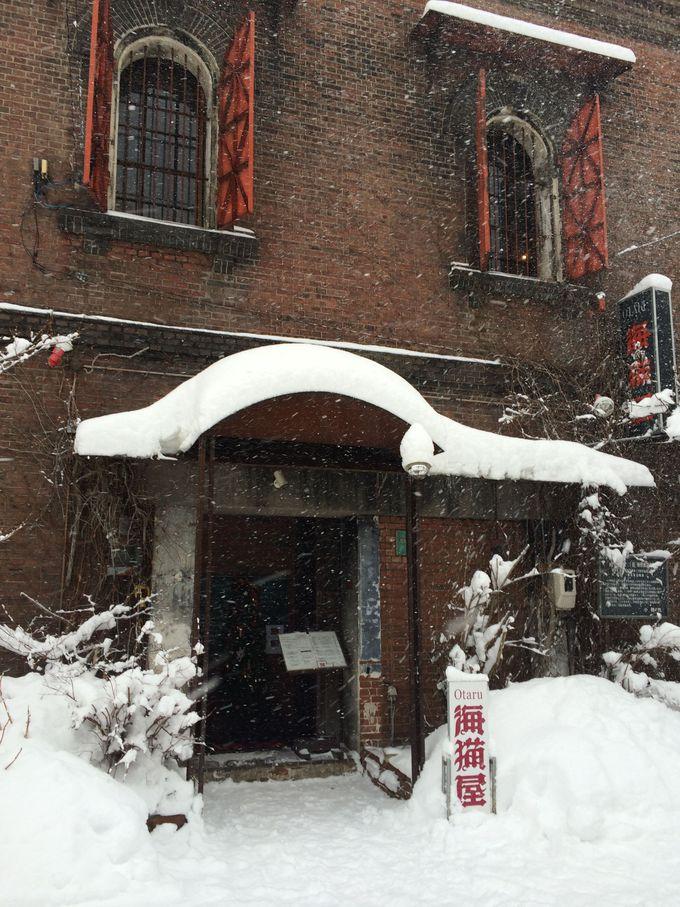 雪の合間の癒しスポット