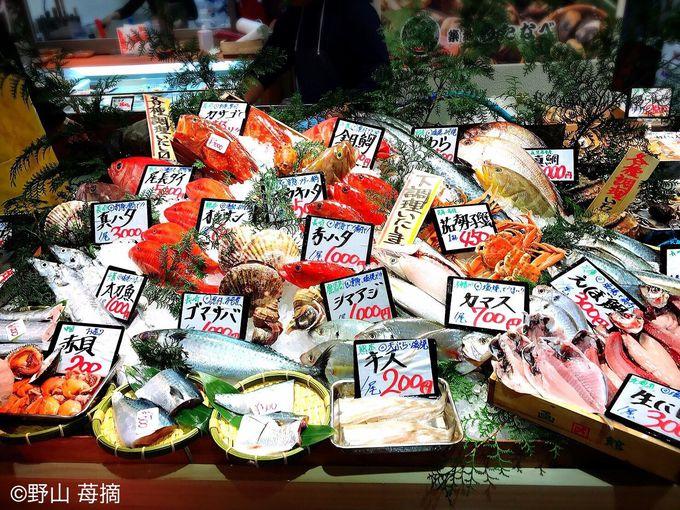 色とりどりの新鮮な魚介!マグロやクジラの専門店も!