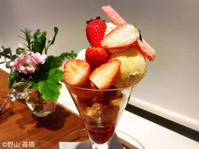 新品種いちご「紅い雫」のパフェ!グラッシェル表参道店で冬ならではの贅沢スイーツ!