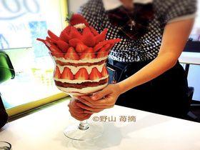 小田原新名物!?「QOL」でど迫力の巨大いちごパフェ&ライスパフェ!