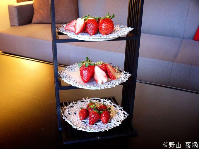 栃木のブランドいちご3種を食べ比べできる「民藝いちご滞在プラン」