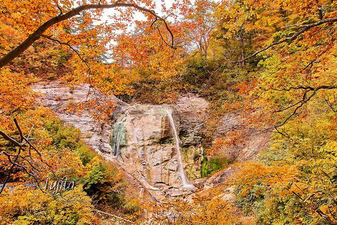 川原毛大湯滝は紅葉も絶景!運次第で足湯も可能?