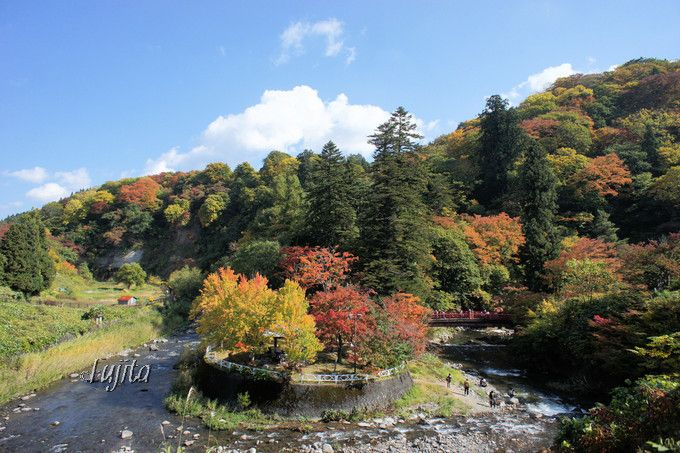 中野もみじ山の紅葉を高台から一望!