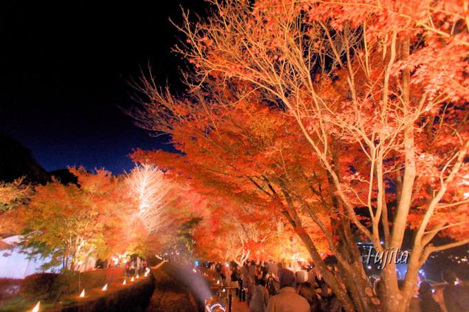 富士山と紅葉のライトアップがコラボ!