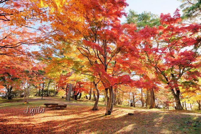 伊香保と紅葉を一望!上ノ山公園ときめきデッキ