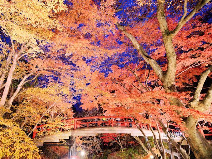 伊香保温泉の紅葉名所!河鹿橋のライトアップは必見