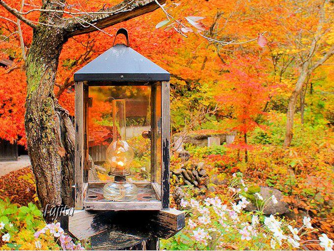 ランプの宿・青荷温泉ではランプの配布を必ず見よう!