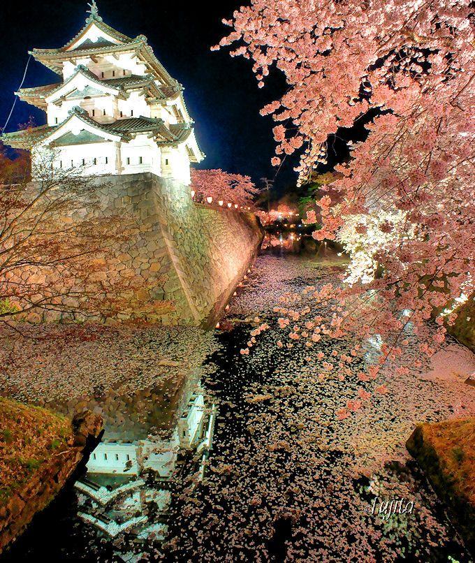 3.天守と夜桜のコラボが幻想的!日本七名城「弘前城」