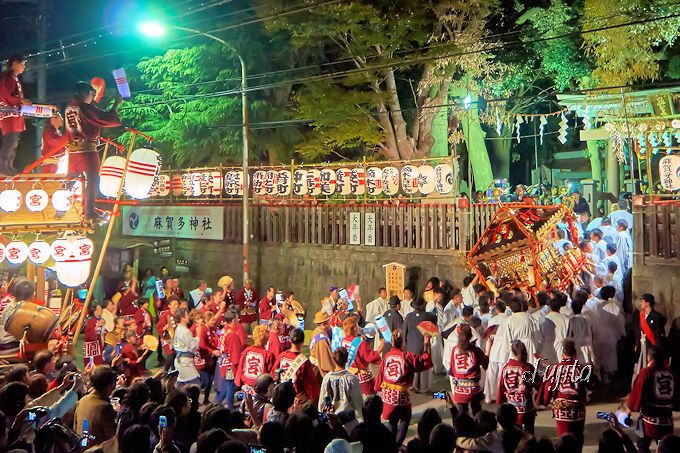 「佐倉の秋祭り」のクライマックスは、最終日の「神輿宮入り」